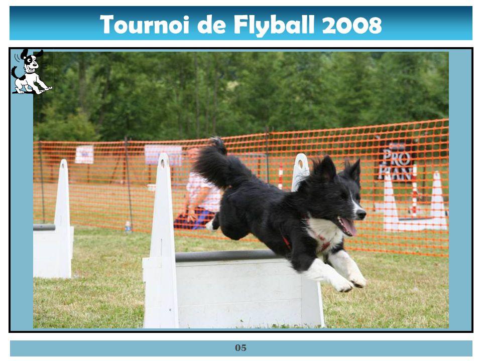 Tournoi de Flyball 2008 04