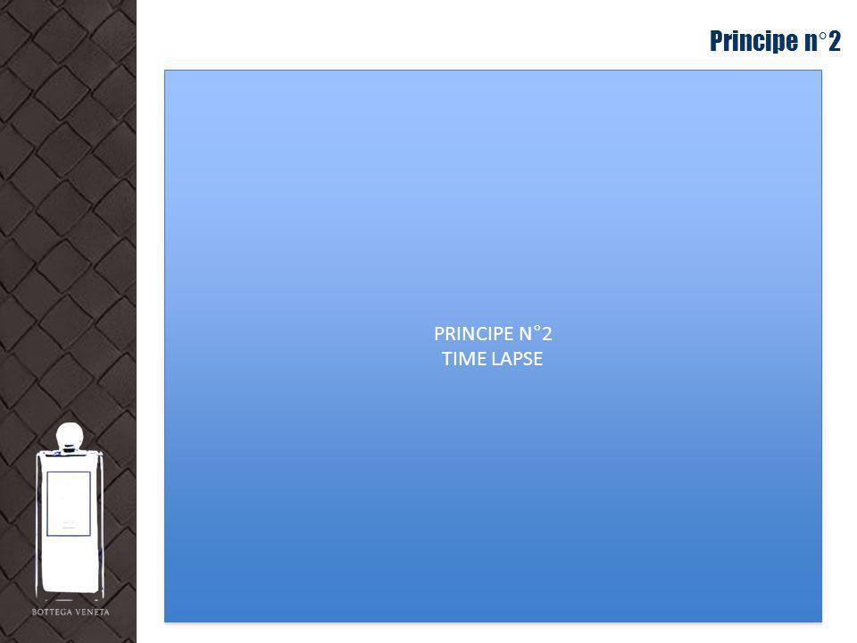 Principe n°2 PRINCIPE N°2 TIME LAPSE PRINCIPE N°2 TIME LAPSE