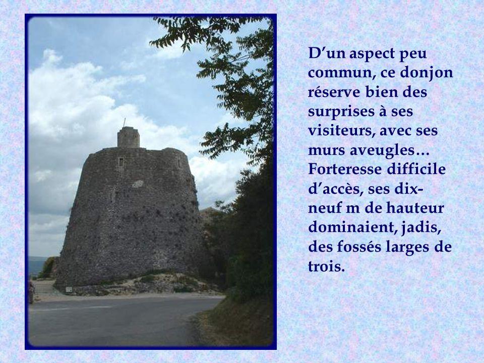 Dun aspect peu commun, ce donjon réserve bien des surprises à ses visiteurs, avec ses murs aveugles… Forteresse difficile daccès, ses dix- neuf m de hauteur dominaient, jadis, des fossés larges de trois.