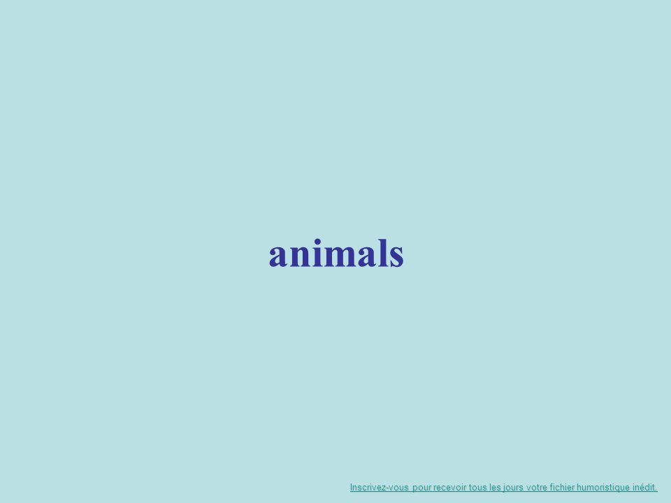 animals Inscrivez-vous pour recevoir tous les jours votre fichier humoristique inédit.
