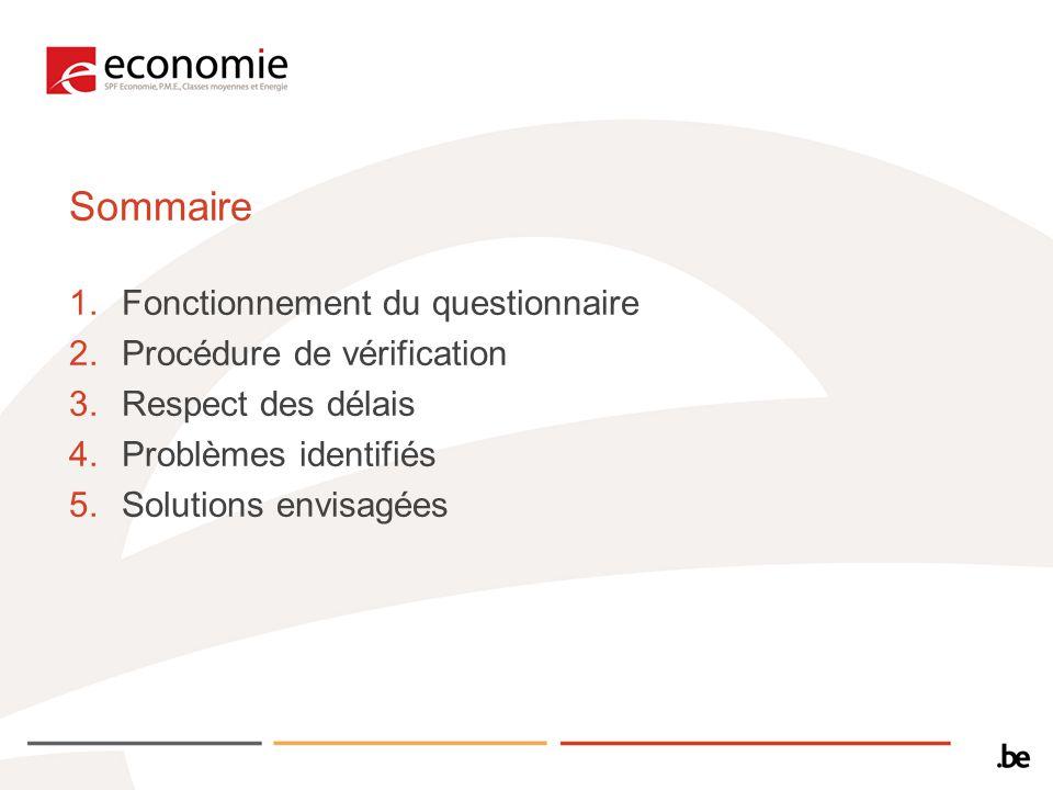 Sommaire 1.Fonctionnement du questionnaire 2.Procédure de vérification 3.Respect des délais 4.Problèmes identifiés 5.Solutions envisagées