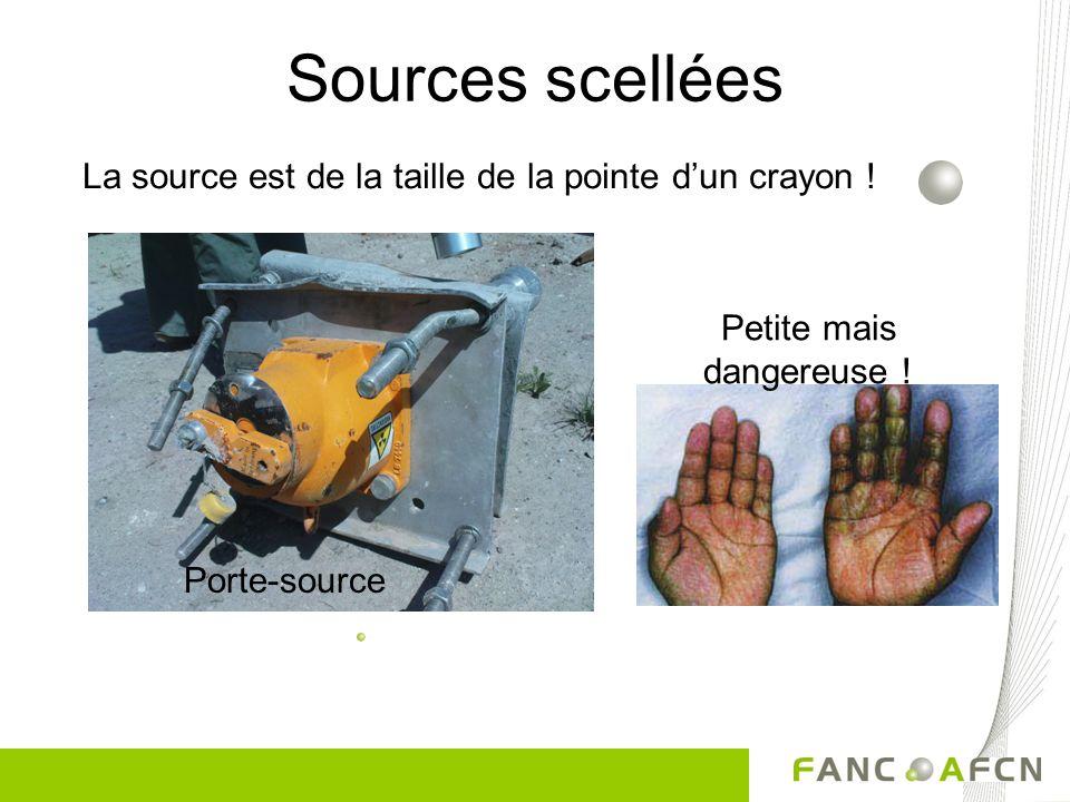 La source est de la taille de la pointe dun crayon ! Petite mais dangereuse ! Porte-source