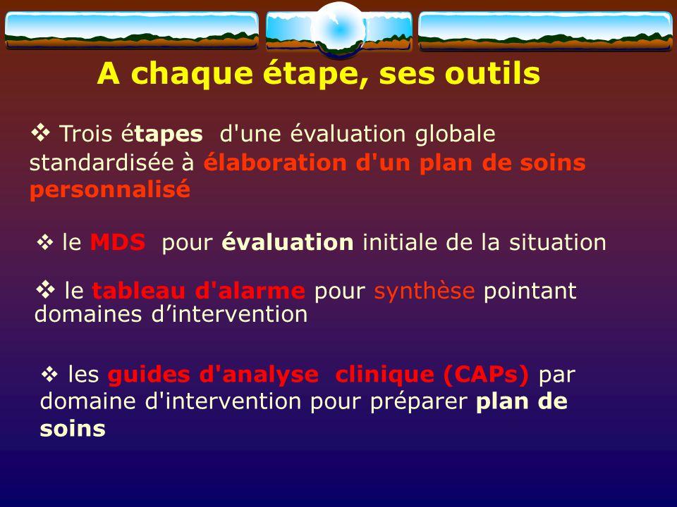 A chaque étape, ses outils Trois étapes d'une évaluation globale standardisée à élaboration d'un plan de soins personnalisé le MDS pour évaluation ini