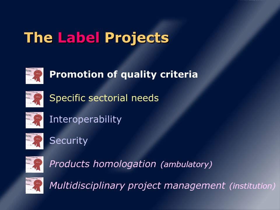 Promotion of quality criteria Specific sectorial needs Interoperability Security Products homologation (ambulatory) Multidisciplinary project management (institution) The Label Projects