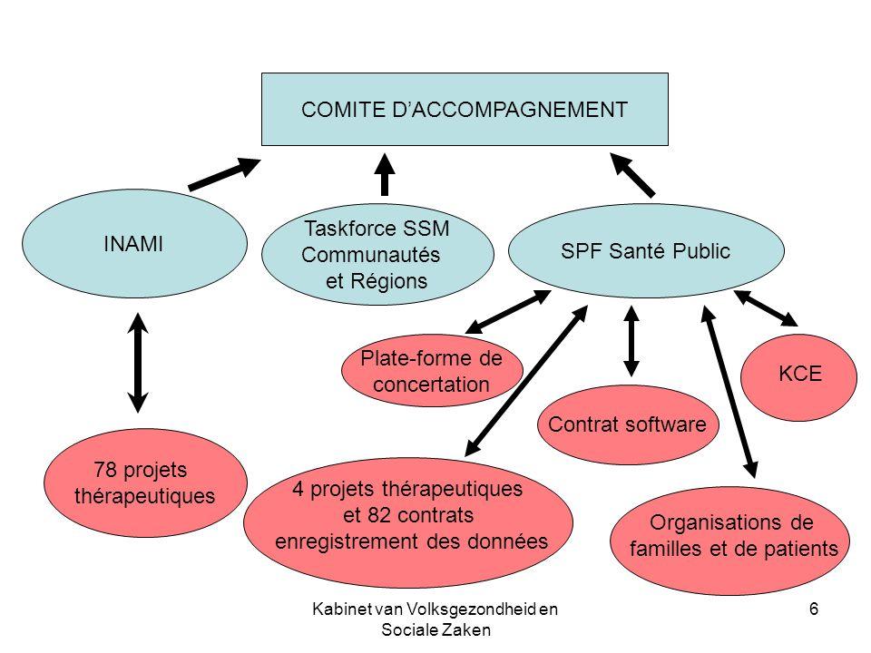 Kabinet van Volksgezondheid en Sociale Zaken 6 COMITE DACCOMPAGNEMENT INAMI Taskforce SSM Communautés et Régions SPF Santé Public 78 projets thérapeut