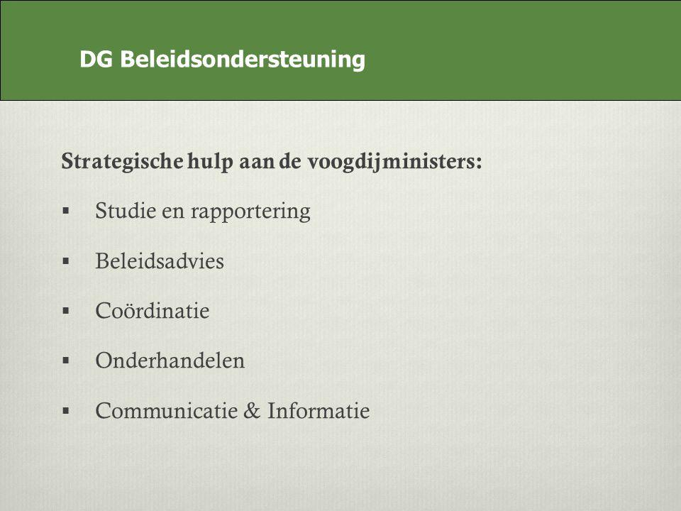 DG Beleidsondersteuning Strategische hulp aan de voogdijministers: Studie en rapportering Beleidsadvies Coördinatie Onderhandelen Communicatie & Informatie DG Beleidsondersteuning