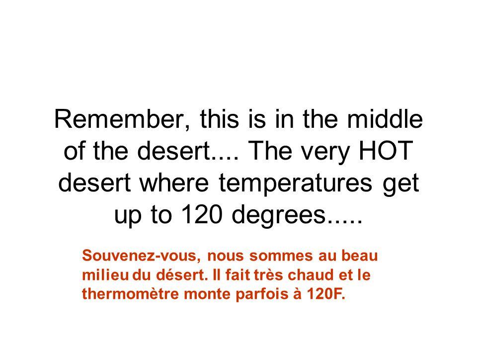 Unbelievable! But true.... Incroyable mais vrai !!!
