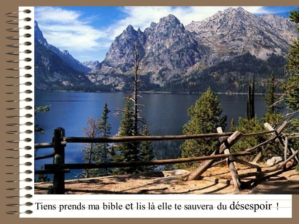 Tiens prends ma bible et lis là elle te sauvera du désespoir !