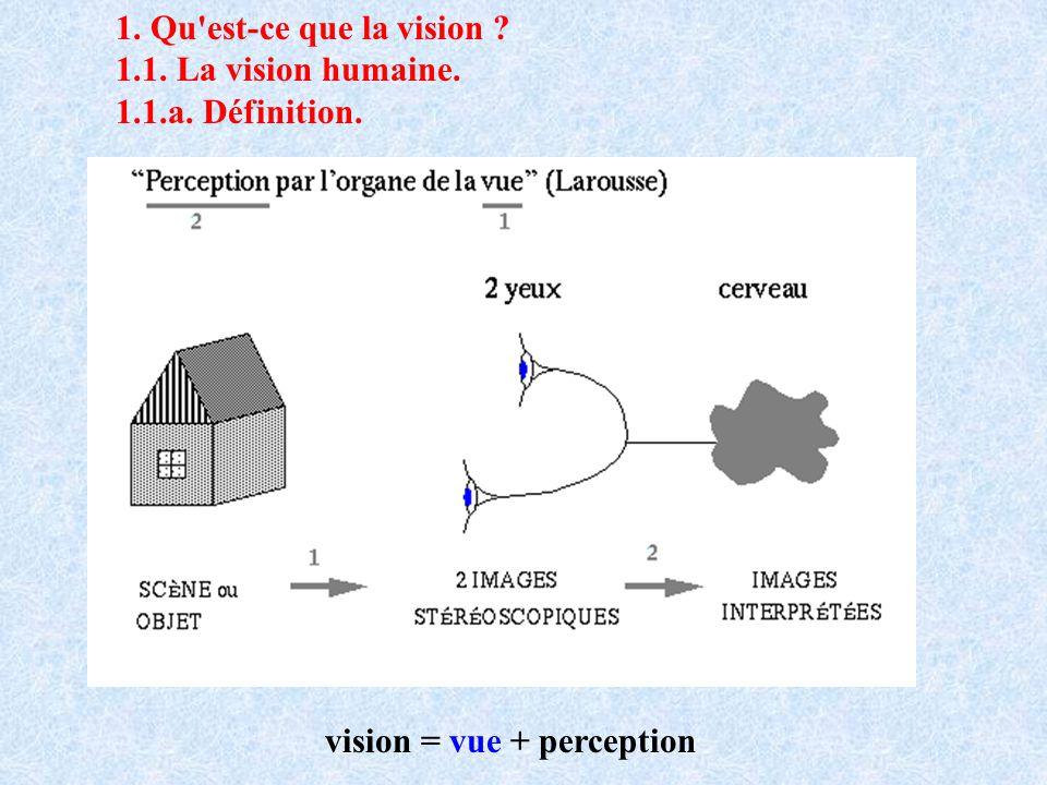 1. Qu'est-ce que la vision ? 1.1. La vision humaine. 1.1.a. Définition. vision = vue + perception