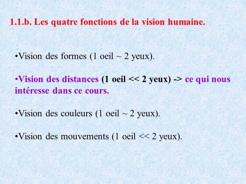 1.1.b. Les quatre fonctions de la vision humaine. Vision des formes (1 oeil ~ 2 yeux). Vision des distances (1 oeil ce qui nous intéresse dans ce cour