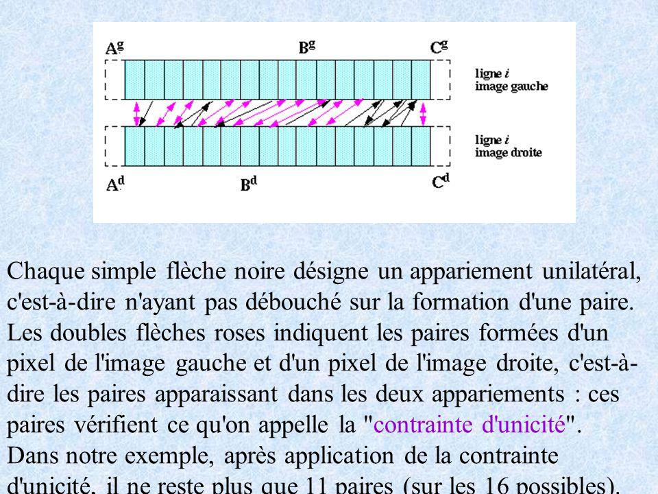 Chaque simple flèche noire désigne un appariement unilatéral, c'est-à-dire n'ayant pas débouché sur la formation d'une paire. Les doubles flèches rose
