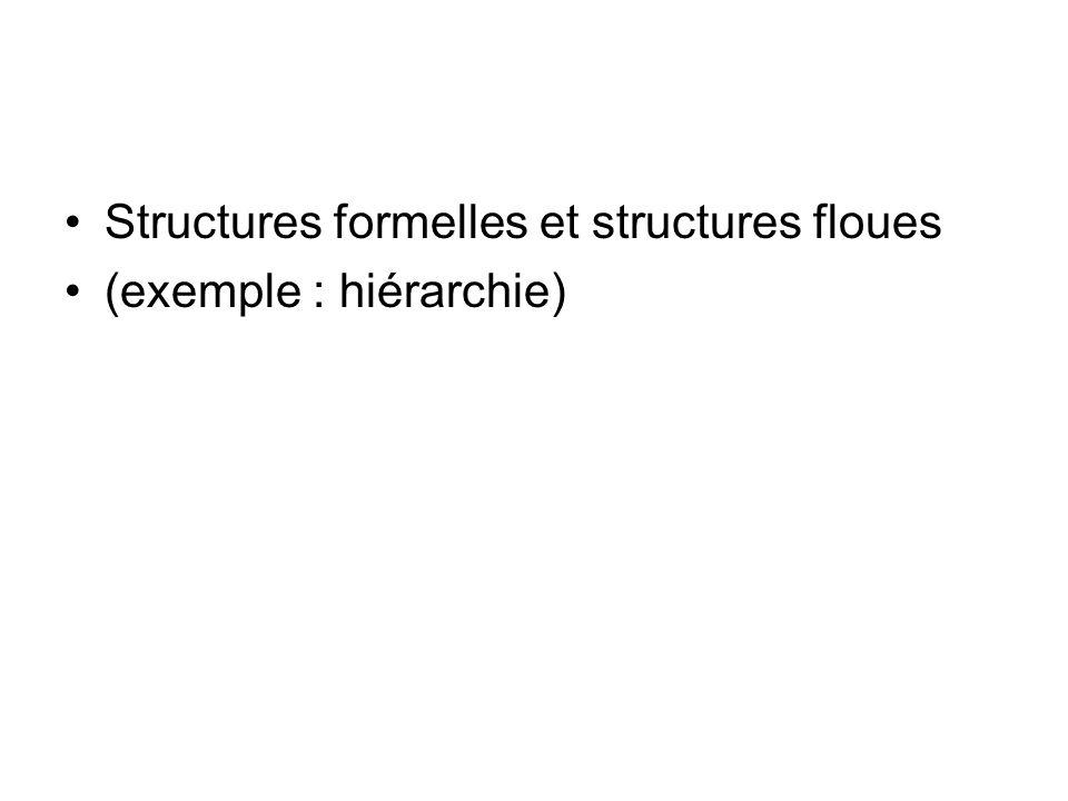 Structures formelles et structures floues (exemple : hiérarchie)