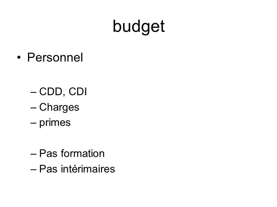 budget Personnel –CDD, CDI –Charges –primes –Pas formation –Pas intérimaires