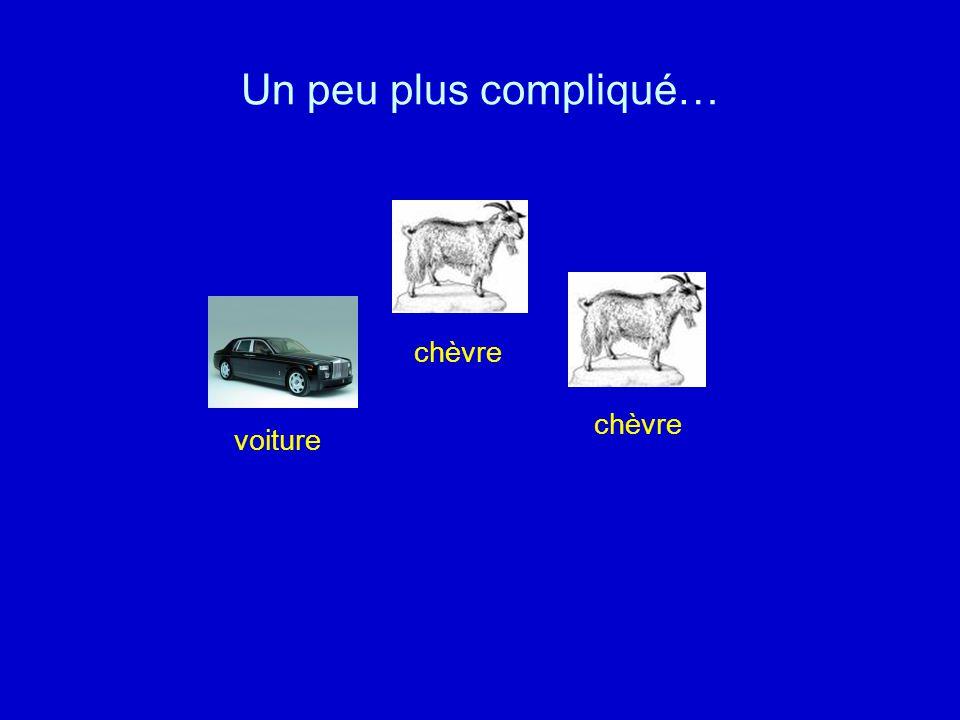 Le présentateur dune émission à la télé met les deux chèvres et la voiture derrière trois portes.