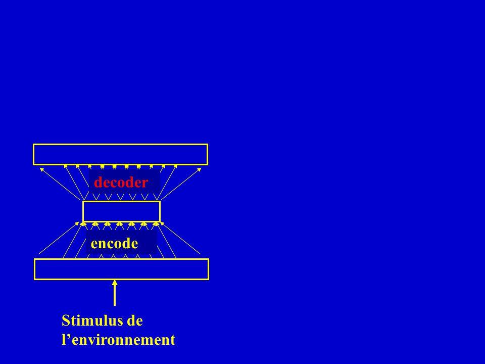 decoder encode Stimulus de lenvironnement