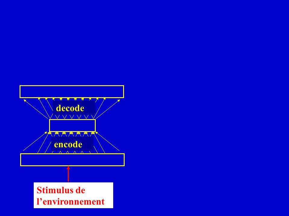 decode encode Stimulus de lenvironnement