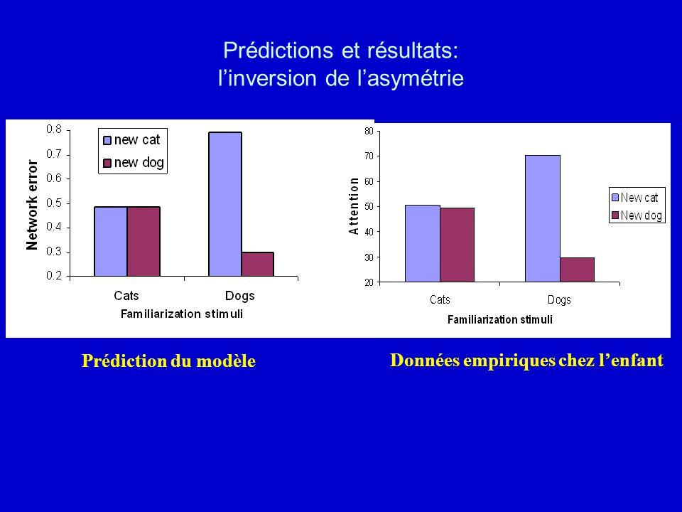 Prédictions et résultats: linversion de lasymétrie Prédiction du modèle Données empiriques chez lenfant