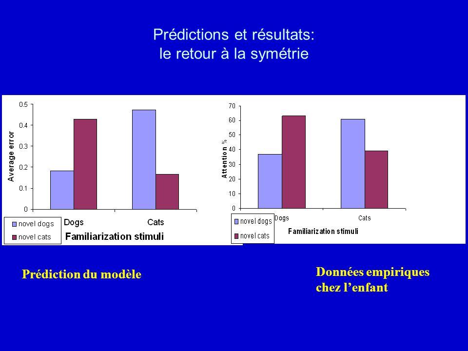 Prédiction du modèle Données empiriques chez lenfant Prédictions et résultats: le retour à la symétrie