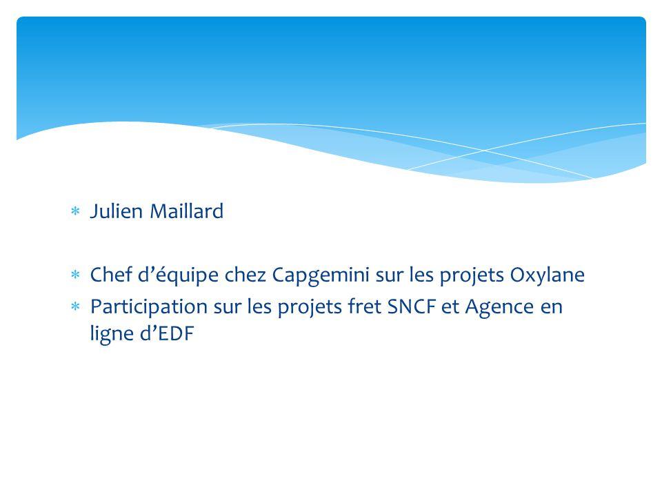 Julien Maillard Chef déquipe chez Capgemini sur les projets Oxylane Participation sur les projets fret SNCF et Agence en ligne dEDF