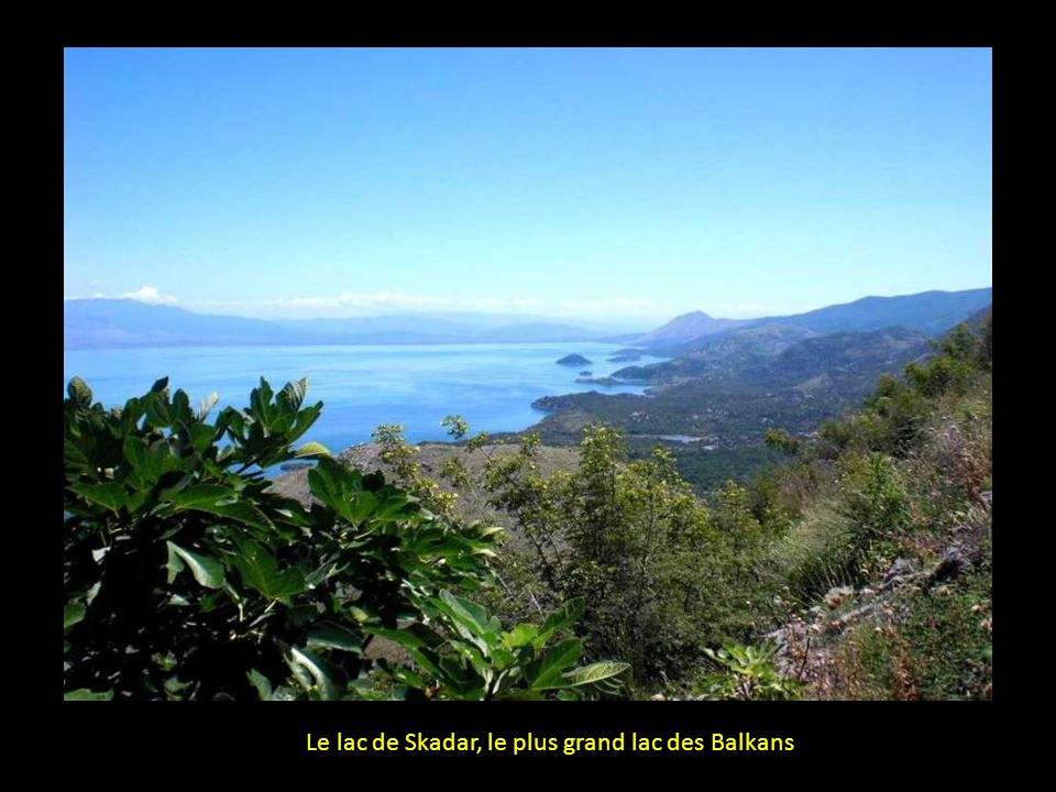 Le lac de Skadar, le plus grand lac des Balkans