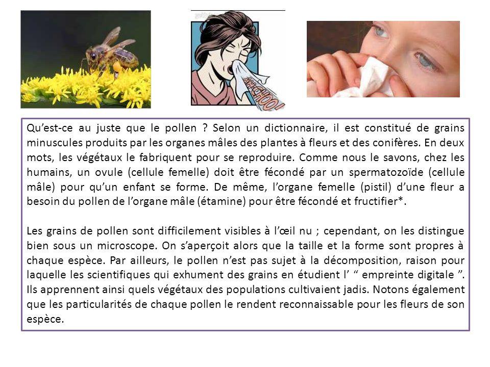 Invisibles à l'oeil nu, les grains de pollen proviennent des arbres, fleurs et autres végétaux et se disséminent dès le début de la saison de floraiso
