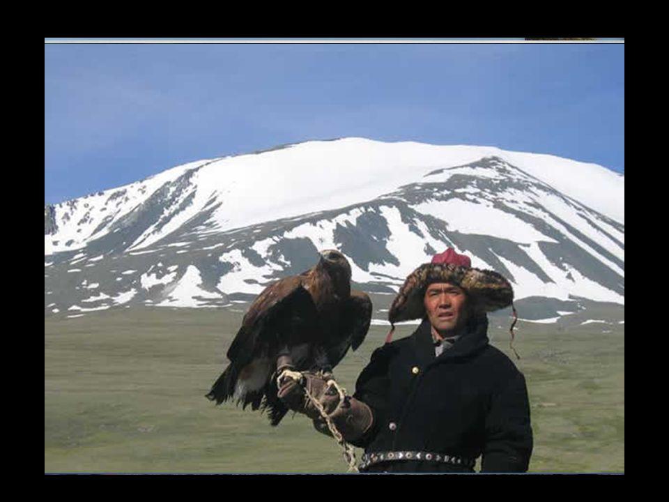 L'Aigle royal se rencontre dans la majeure partie de l'hémisphère Nord. Construit dans un escarpement ou un arbre, son nid est quelquefois occupé pend