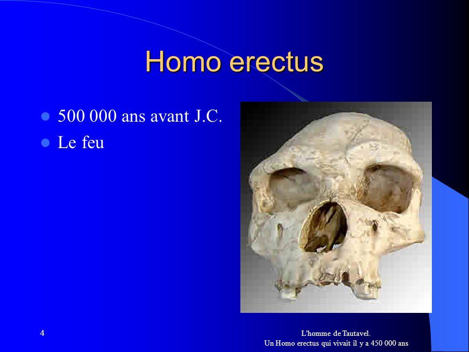 4 Homo erectus 500 000 ans avant J.C. Le feu L'homme de Tautavel. Un Homo erectus qui vivait il y a 450 000 ans