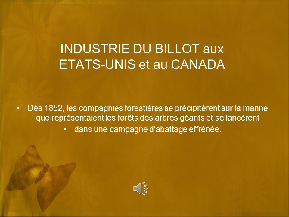 INDUSTRIE DU BILLOT aux ETATS-UNIS et au CANADA Dès 1852, les compagnies forestières se précipitèrent sur la manne que représentaient les forêts des a
