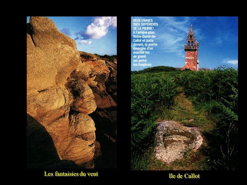 Les îles de Callot