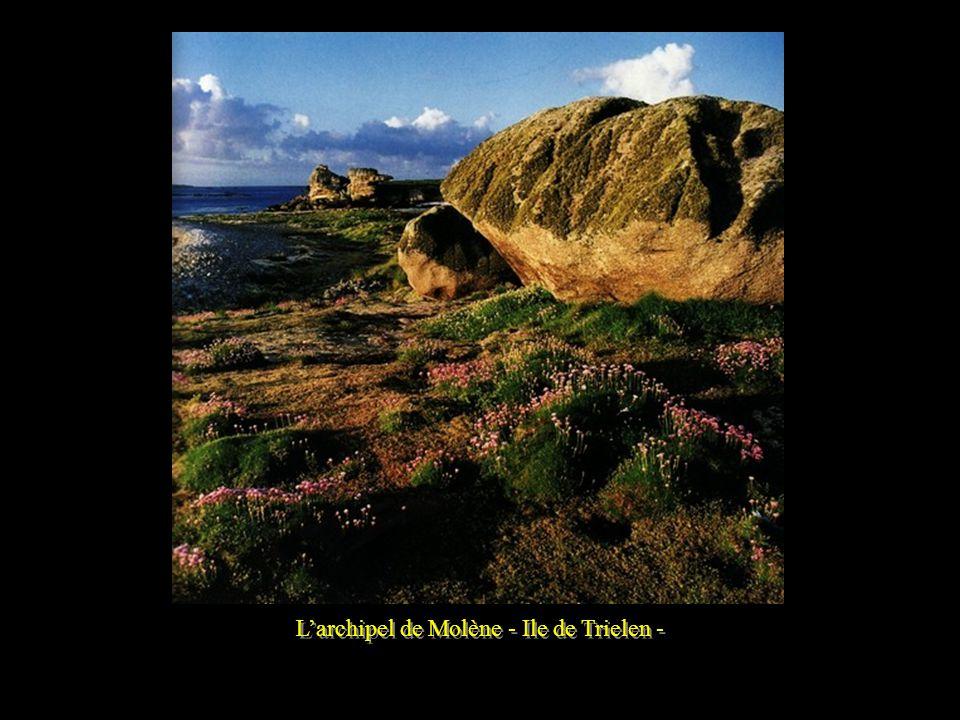 Larchipel de Molène Larchipel de Molène est situé dans une des mers les plus dures de la côte Atlantique