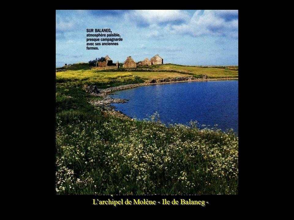 Larchipel de Molène - Ile de Trielen -