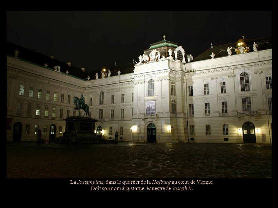 La cour In der Burg La Schweizertor - Porte qui mène à la Cour des Suisses