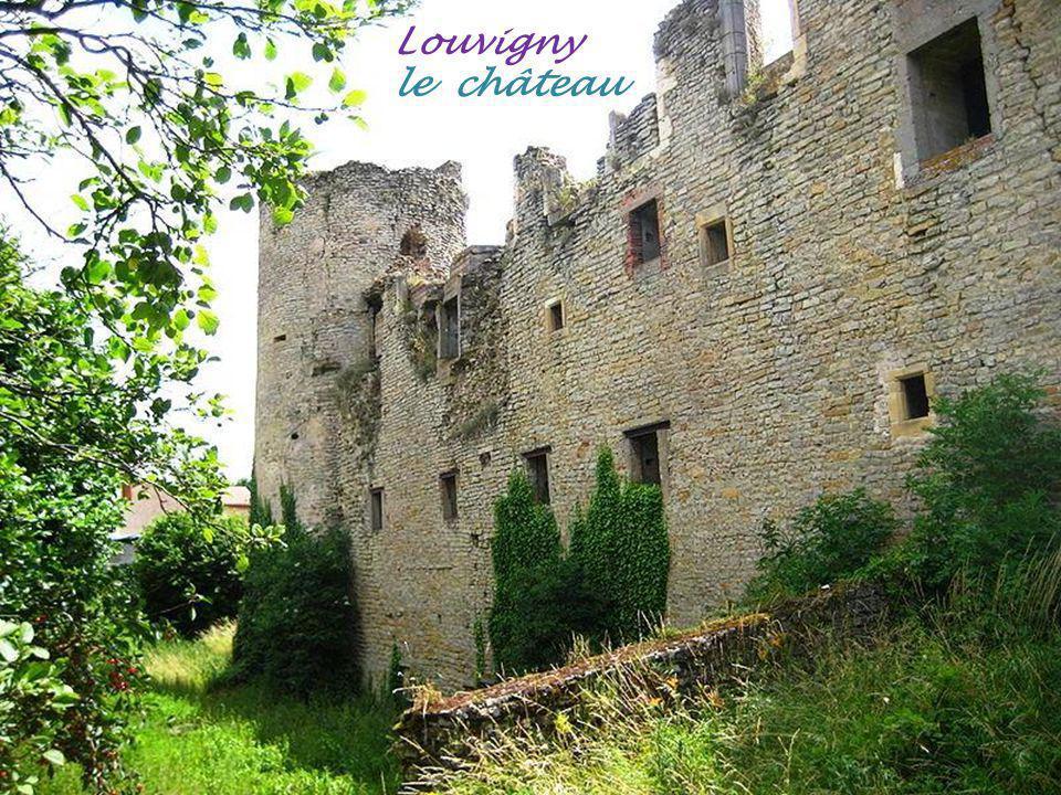 Aulnois-sur-Seille le château