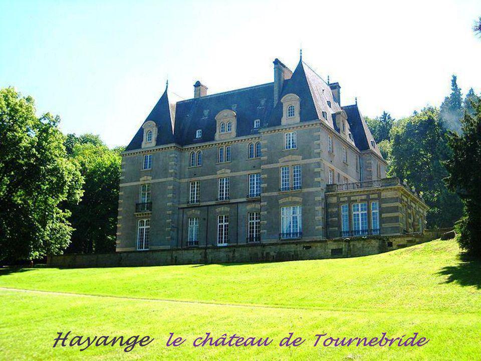 Richemont le château et la chapelle de Pepinville