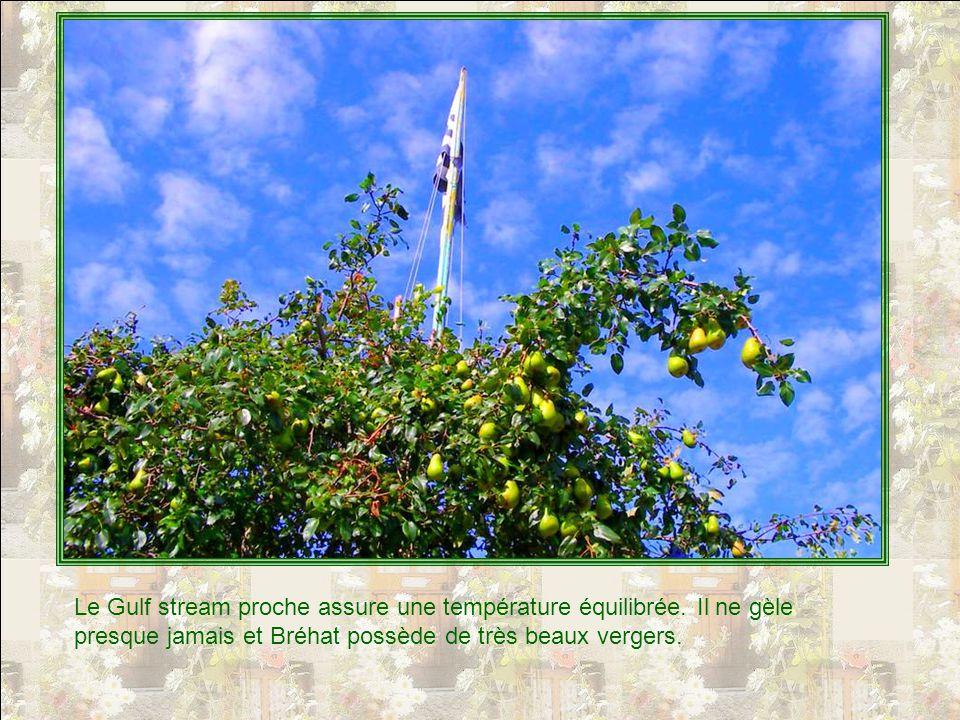Vous voyez ici le curieux clocher de léglise de Port-Gros.