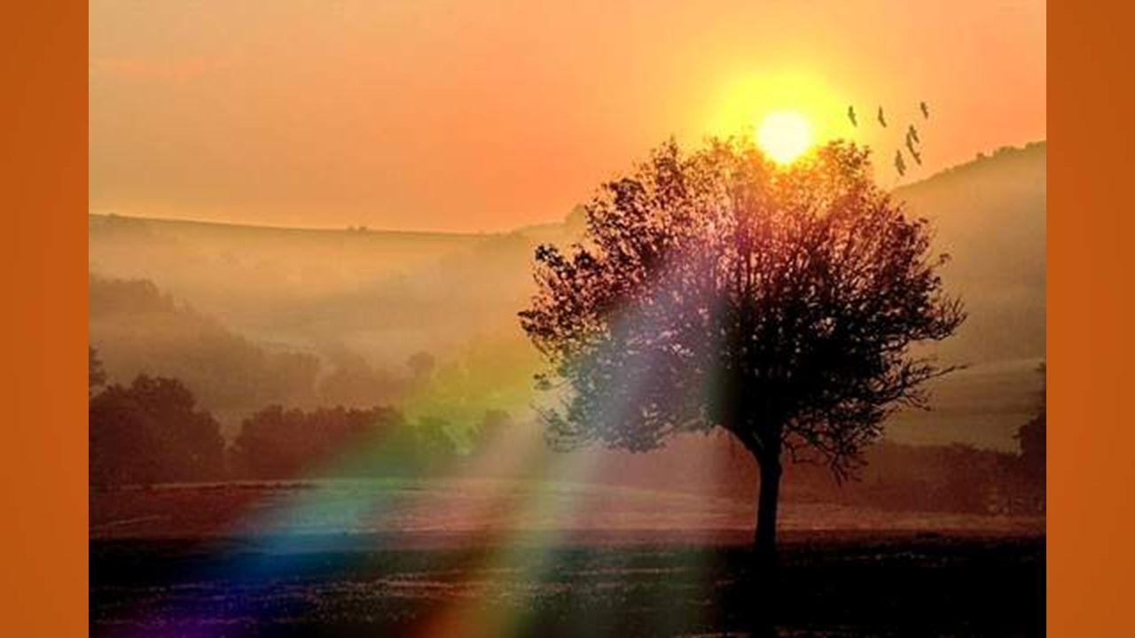 Voir le jour se lever, savoir que lon existe, Pouvoir écrire encore ses rêves dutopiste, Exprimer sa pensée comme au temps de jadis Sont de grands privilèges à la fin dune vie.