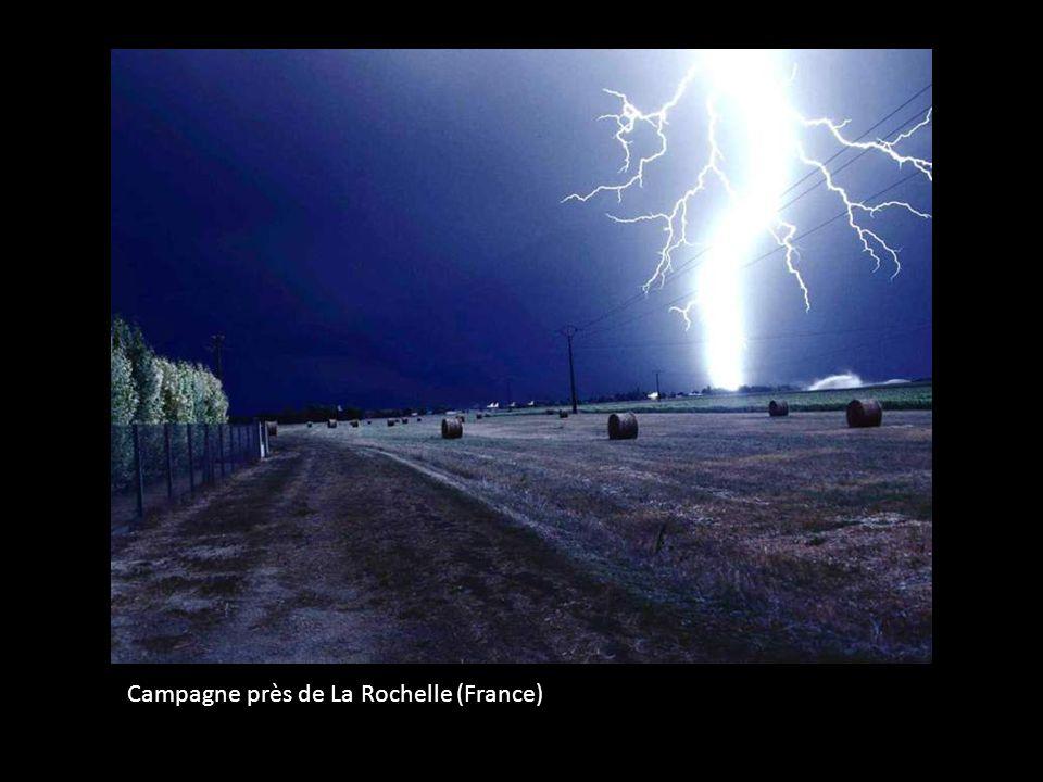 Campagne près de La Rochelle (France)