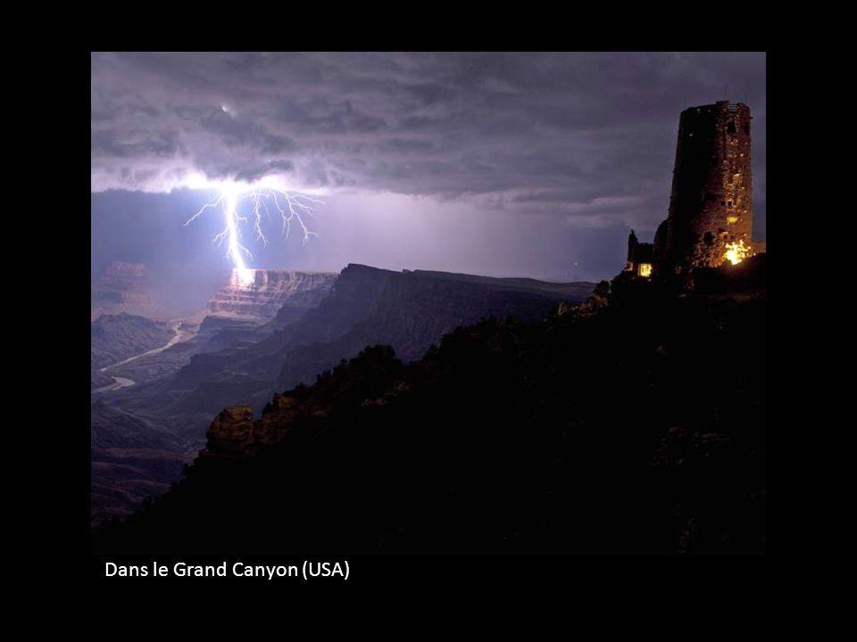 Dans le Grand Canyon (USA)