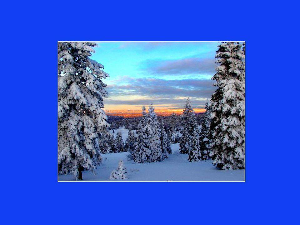 Si les Québécois sont à labri de tous les grands problèmes de la planète, cest à cause du froid.