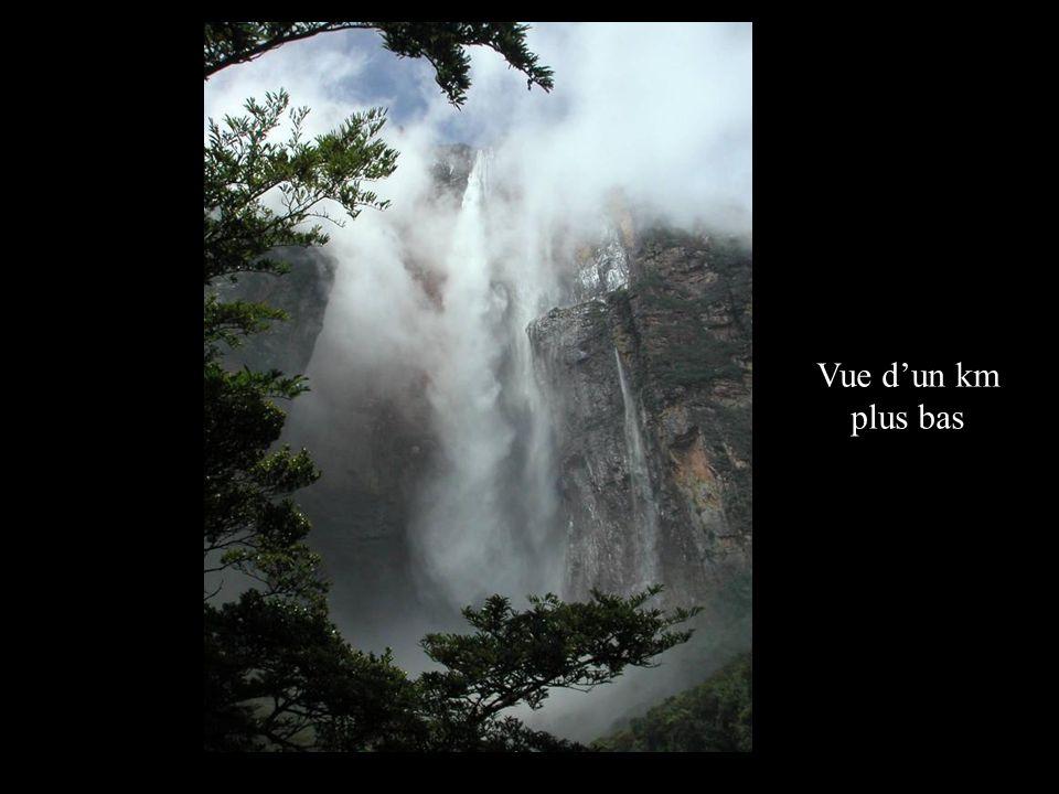 Les Angel Falls ( le nom local étant Kerepakupay Vená ) … elles ont une hauteur de chute de 979 m ( la plus grande au monde ), par endroit 807 m dun seul trait .