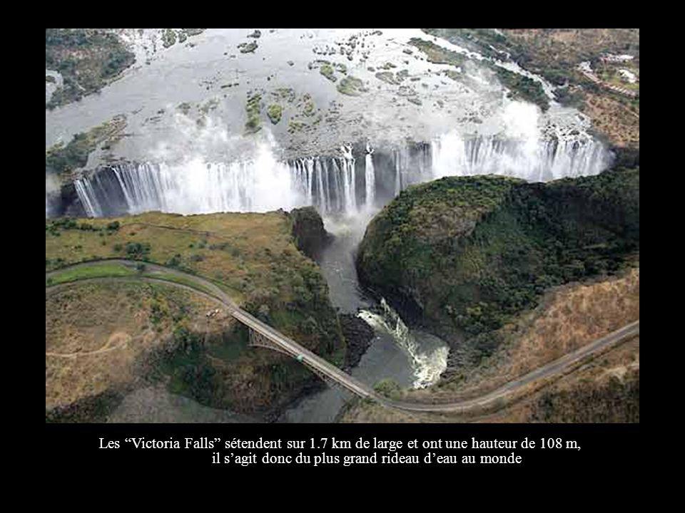 Voici une vue aérienne des célèbres Victoria Falls