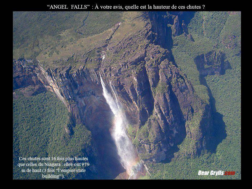 Cest le Zambèze qui alimente les chutes Victoria à la limite de la Zambie et du Zimbabwe.