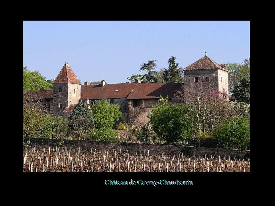 Château de Rosières
