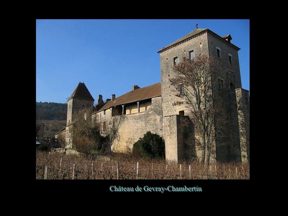 Château de Gevray-Chambertin