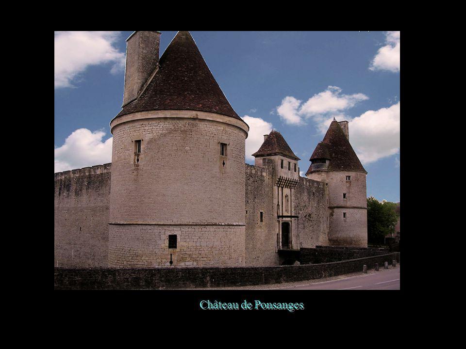 Château de La Rochepôt