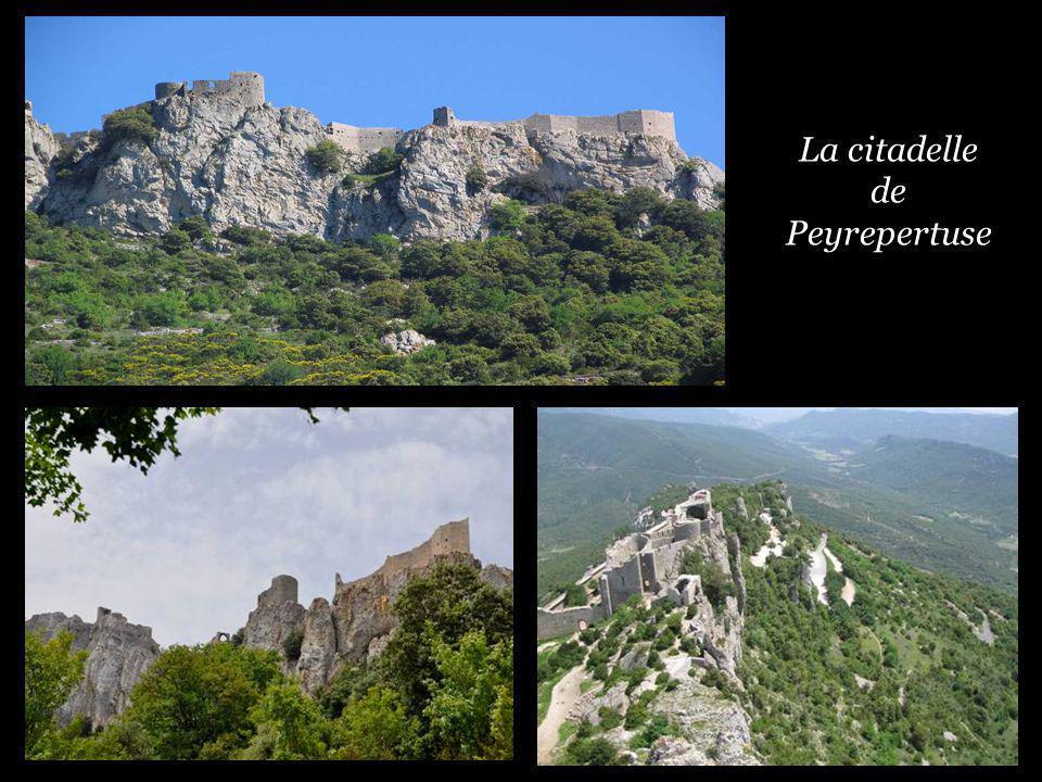 Nature et air pur, vous voici sur les sentiers de lhistoire Le château de Montségur au sommet de son pog