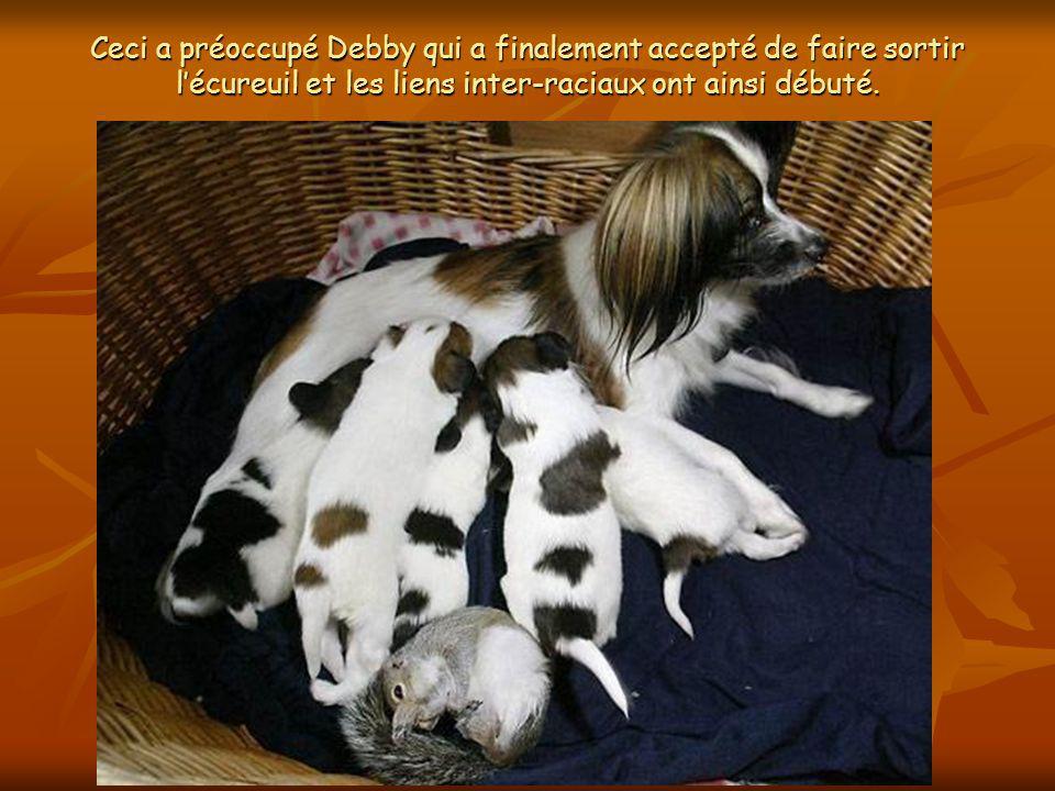 Debby et son mari ont vu la chienne trainer deux fois la cage de lécureuil près de son propre « coin de repos ».