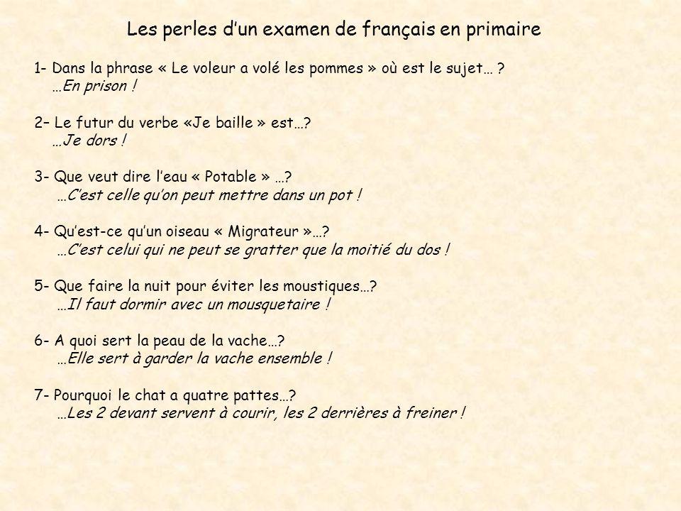 Les perles dun examen de français en primaire 1- Dans la phrase « Le voleur a volé les pommes » où est le sujet… .