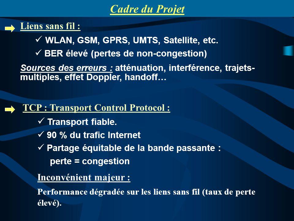 Liens sans fil : WLAN, GSM, GPRS, UMTS, Satellite, etc. BER élevé (pertes de non-congestion) Sources des erreurs : atténuation, interférence, trajets-