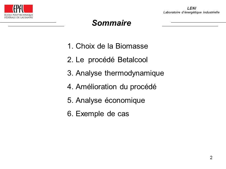 2 1.Choix de la Biomasse 2.Le procédé Betalcool 3.Analyse thermodynamique 4.Amélioration du procédé 5.Analyse économique 6.Exemple de cas Sommaire LENI Laboratoire dénergétique industrielle